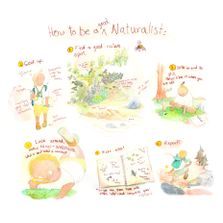 How to be a Naturalist