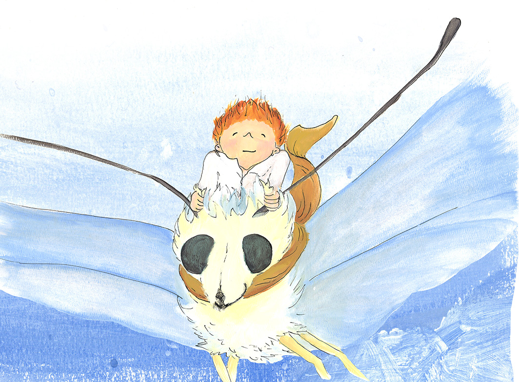 Case flying Flinder children's book illustration acrylic adventure comission