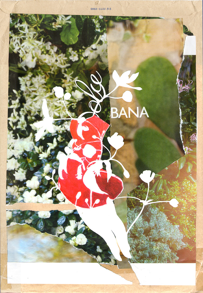 flower collage glamorous jasmine vine brand name commentary