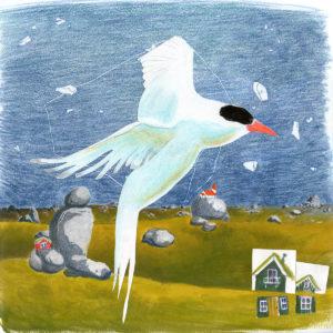Icelandic Tern