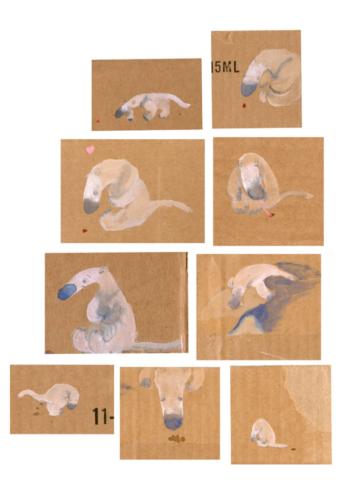 anteater love