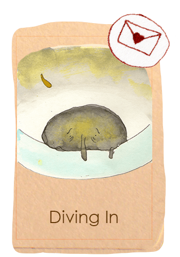 cardbookdiving