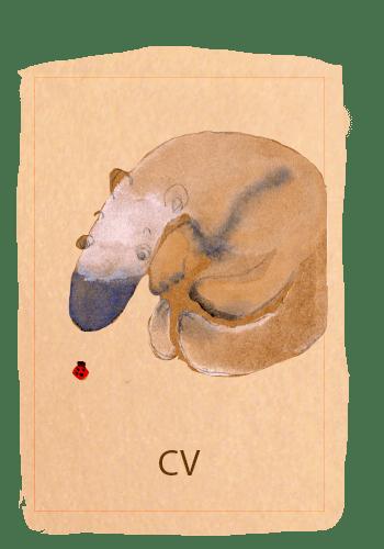 cardcv2